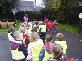Primary 1- Shared Education