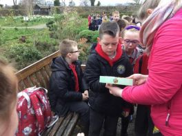 P4 Shared Education: Walled Garden Visit